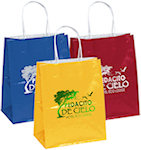 Amanda Gloss Shopping Bags